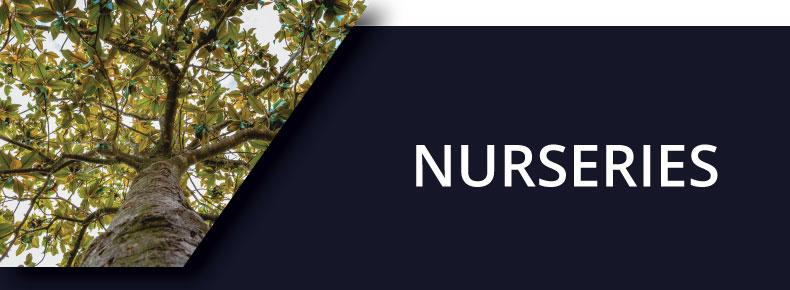 Nurseries Button Hover