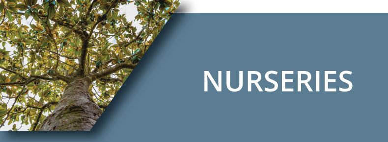 Nurseries Button