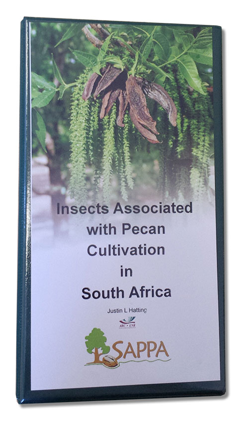 Insects Associated With Pecan Cultivation